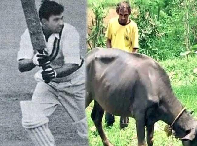 क्रिकेट विश्वकप 1998 का स्टार क्रिकेटर भैंस चराने को मजबूर