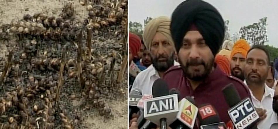 पाकिस्तान के सेना प्रमुख से गले मिलने व शपथ ग्रहण समारोह में जाने का कोई पछतावा नहीं : नवजोत सिंह सिद्धू 4