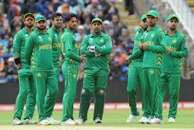 पाकिस्तानी क्रिकेटर ने कश्मीर को बताया पाकिस्तान का हिस्सा, सोशल यूजर ने दिखा दी आइना