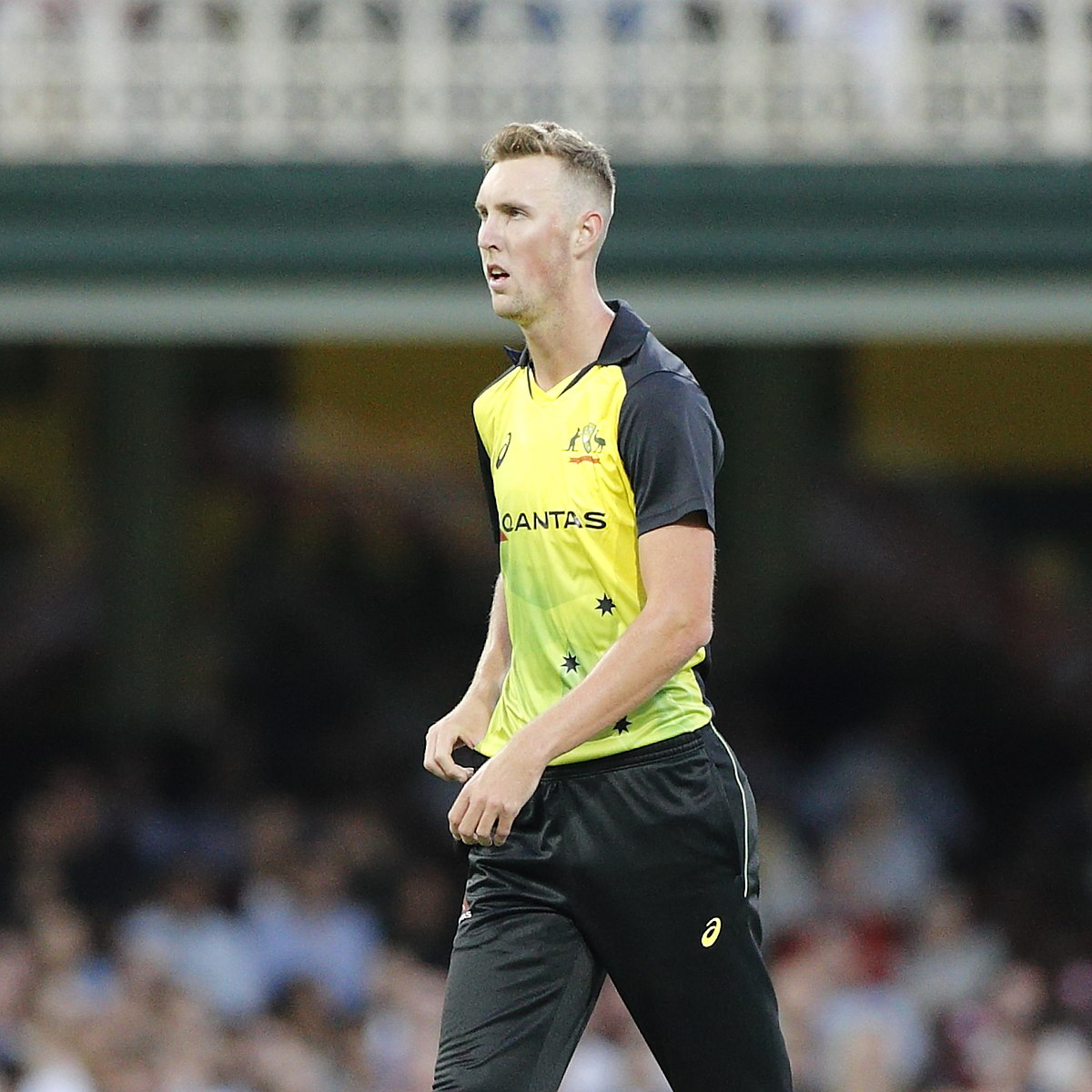 बिली स्टेनलेक के अलावा ये खिलाड़ी भी अन्तर्राष्ट्रीय टी-20 के एक मैच में ले चुके है 4 विकेट, लिस्ट में 1 भारतीय
