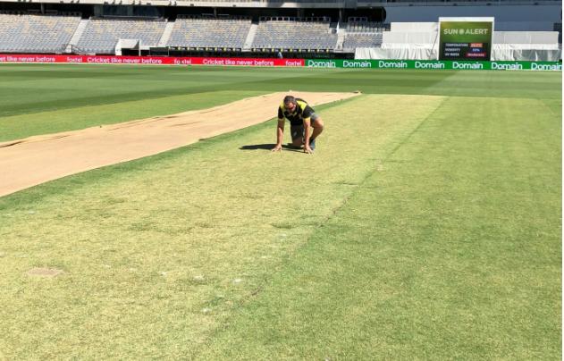 AUSvsIND: क्यूरेटर का खुलासा, पर्थ टेस्ट के लिए ऐसी विकेट बनाने का मिला था क्रिकेट ऑस्ट्रेलिया से आदेश 2