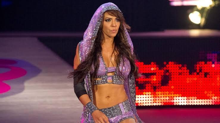 5 WWE सुपरस्टार जो अब आम लोगों की तरह करते हैं नौकरी और जीवनयापन 4