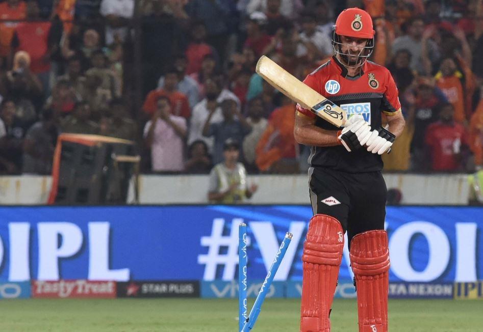 श्रीलंका के खिलाफ टी-20 सीरीज में विस्फोटक बल्लेबाजी के बाद आरसीबी फैंस ने कॉलिन डी ग्रैंडहोम को किया ट्रोल 2