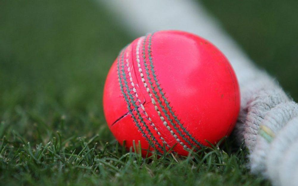 ईडन गार्डन पिच के क्यूरेटर ने बताया पहले डे-नाईट टेस्ट में किसकी मददगार होगी कोलकाता की पिच 2