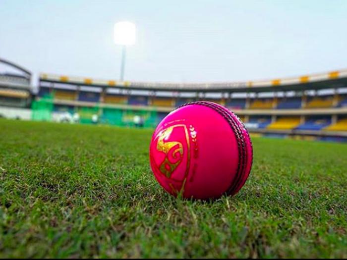 भारतीय टीम के पहले पिंक बॉल टेस्ट के लिए तैयार हो गया है कोलकाता, यहाँ देखें वीडियो