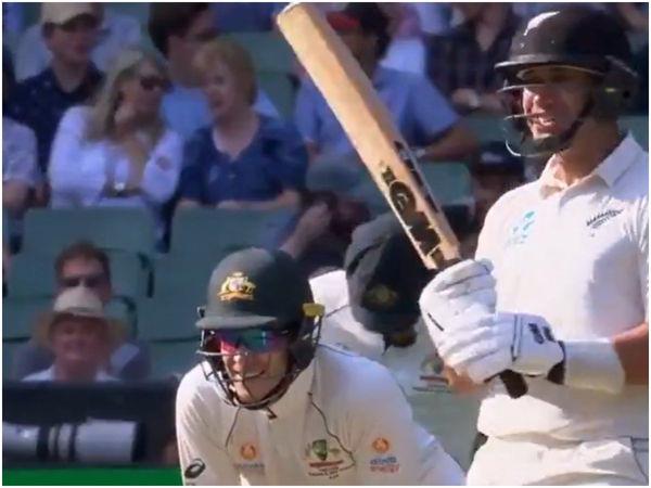 वीडियो : ऑस्ट्रेलिया कप्तान टिम पेन ने रॉस टेलर को किया स्लेज, कहे उनसे ये शब्द