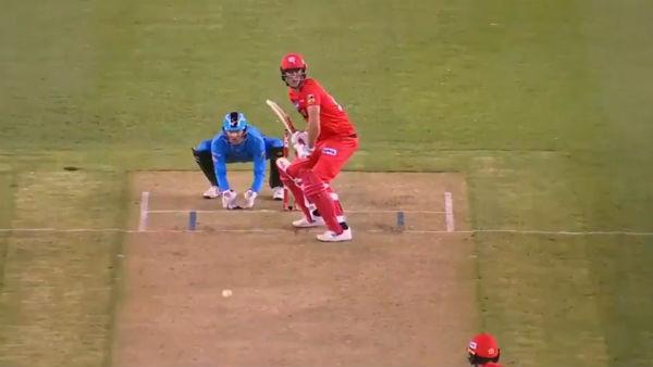 बिग बैश लीग में अंपायर ने उड़ाया राशिद खान का मजाक, यहाँ देखें वीडियो 1
